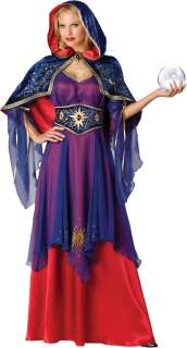 Sexy Sorceress Witch Fortune Teller Halloween Costume 843269017217