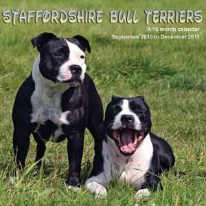 2011 Dog Calendars Staffordshire Bull Terriers   16 Month
