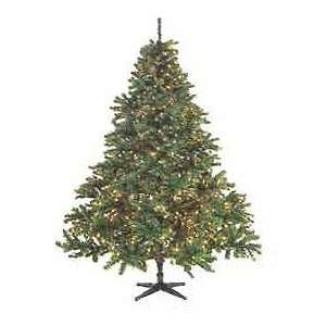 Douglas Fir Artificial Christmas Tree   Clear Lights