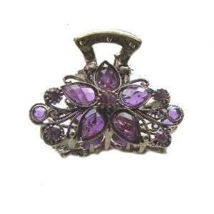 Gold Crystal Rhinestone Metal Hair Claw Clip (Hair Jewelry) (PURPLE